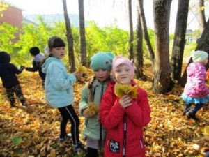 сбор осенних листьев (2)